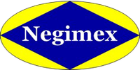 Les spécialistes de la pompe immergée | Bienvenue sur notre site internet | Negimex